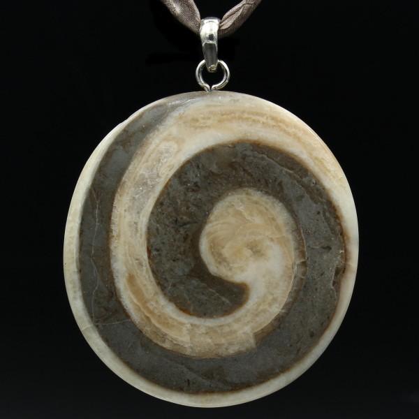 Gosauschnecke Fossil Anhänger Silber - Unikat 1