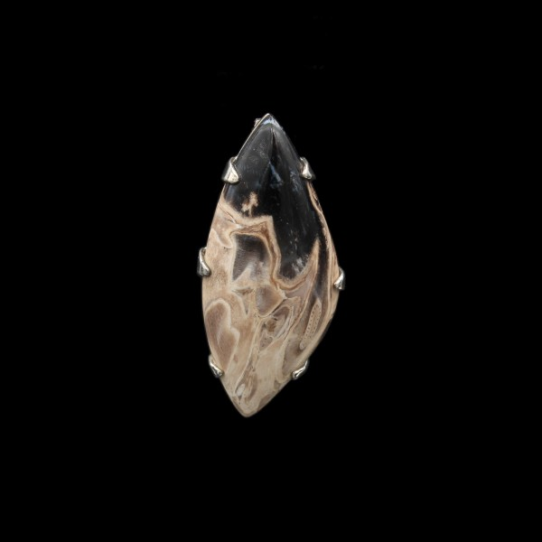 Fossilised Palm Tree Silver Pendant