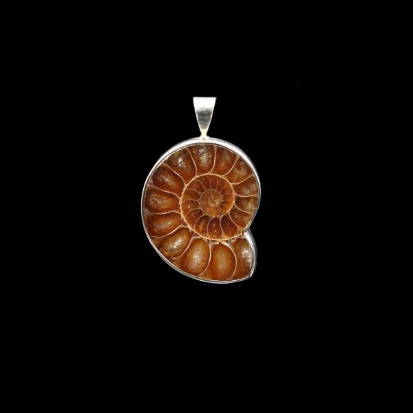 Ammonite Fossil Pendant - Silver