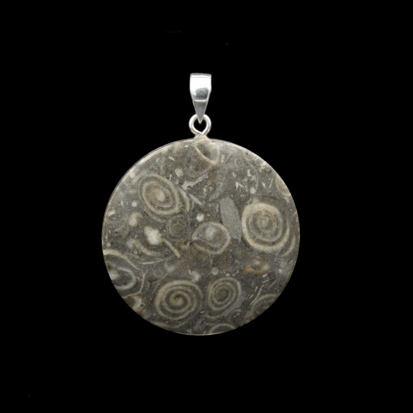 Limestone With Snail Fossils Pendant - Handmade