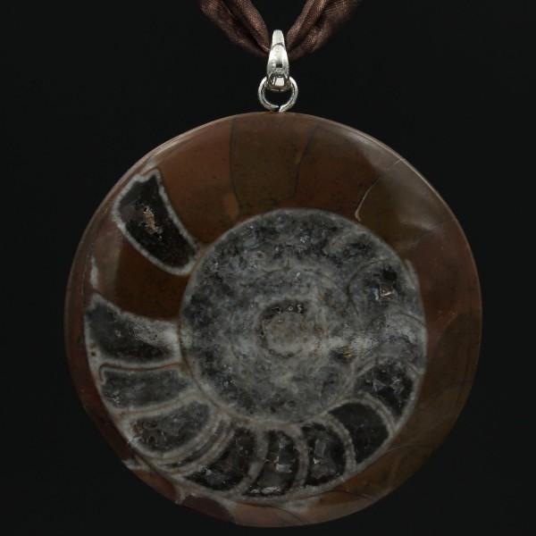 Ammonit Anhänger - Vorderseite